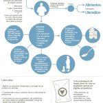 Salmonela- Causa mais frequente de Infecção Alimentar