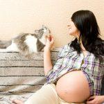 Entenda os reais riscos de uma gravidez acompanhada de cães e gatos em casa