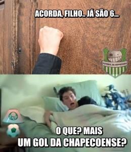 Palmeiras_41