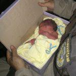 Recém-nascido é encontrado em caixa de sapatos na Bahia
